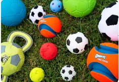 20200731 162038 compress36 4 Best dog-proof soccer balls for dogs of all sizes (All 13 tested!)